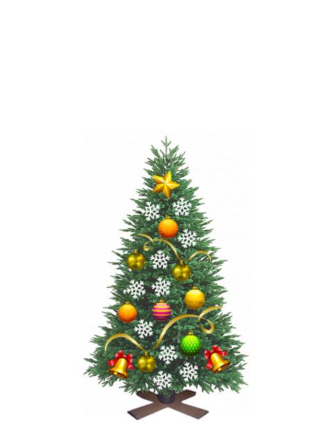 Пихта живая новогодняя от 0,75 до 1,00 метра