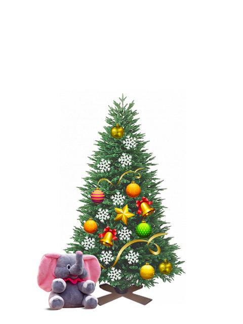 Пихта живая новогодняя от 1,00 до 1,25 метра